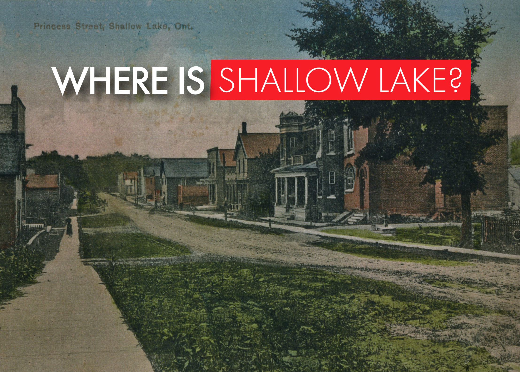 Where is Shallow Lake